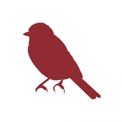 buitenvogels